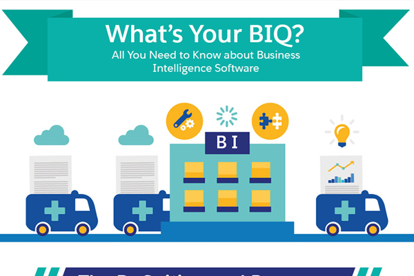 [Infographic] All You Need to Know about Business Intelligence Software